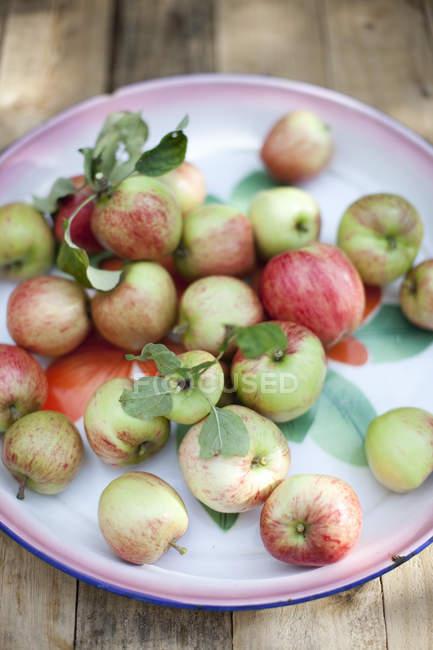 Прямо над постріл свіжі яблука на тарілку — стокове фото