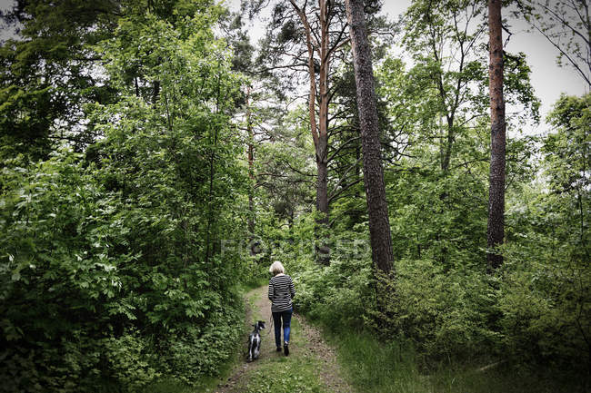 Rear view of senior woman walking with dog amidst trees — Stock Photo