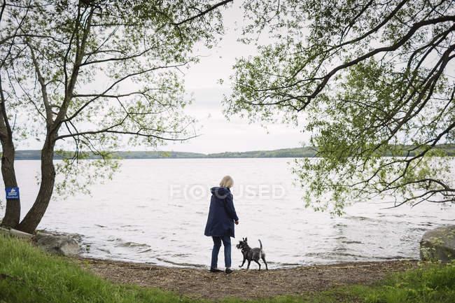 Vista posteriore della donna maggiore in piedi con il cane a lakeshore — Foto stock