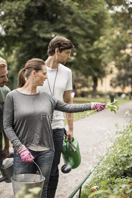 Amici maschi con la donna che punta le piante in giardino — Foto stock