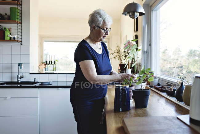 Retired senior woman standing by potted plants on kitchen counter at home — Stock Photo