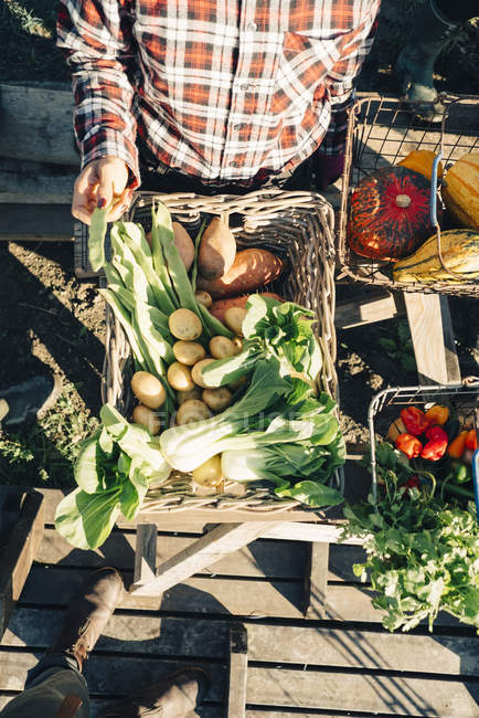 Directly above shot of female farmer selling fresh organic vegetables at market — Stock Photo
