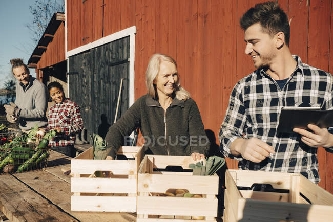 Smiling farmers arranging organic vegetables in crates outside barn — Stockfoto