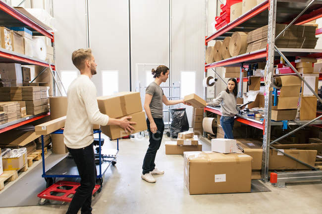 Full length of coworkers stacking boxes on rack standing at warehouse — Stock Photo