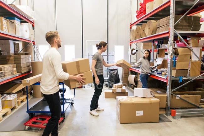 Lunghezza totale dei colleghi che impilano scatole su rack in piedi presso il magazzino — Foto stock