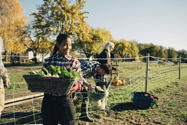 Smiling female farmer carrying basket of vegetables with friends in background at field — Stock Photo