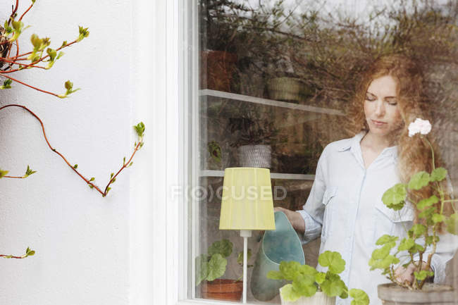 Woman watering potted plant at home seen from glass window — Stock Photo