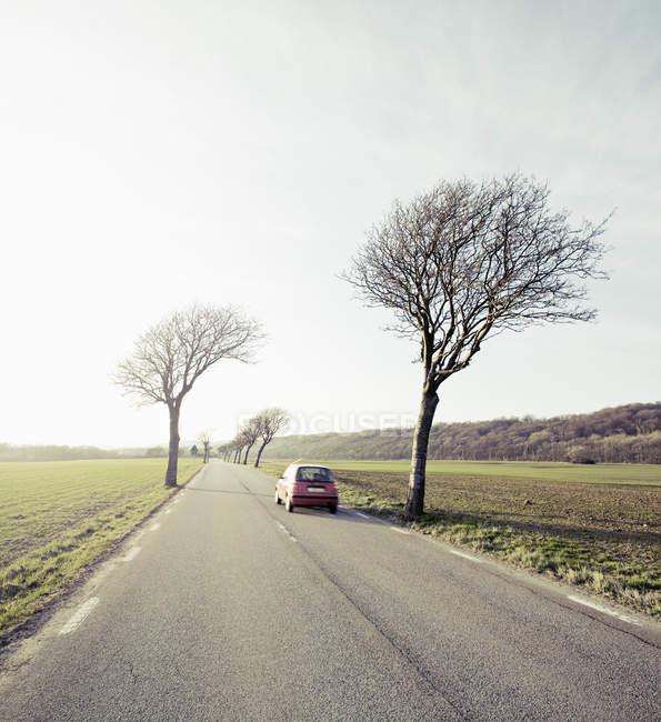 Дерева і на узбіччі і автомобіль на сільських асфальтована дорога між зелені поля — стокове фото