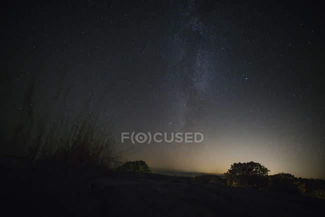 Scenic view of landscape and trees silhouettes against sky at night - foto de stock