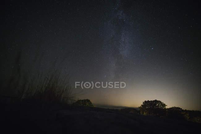 Herrliche Sicht auf Landschaft und Bäume Silhouetten gegen Himmel in der Nacht — Stockfoto