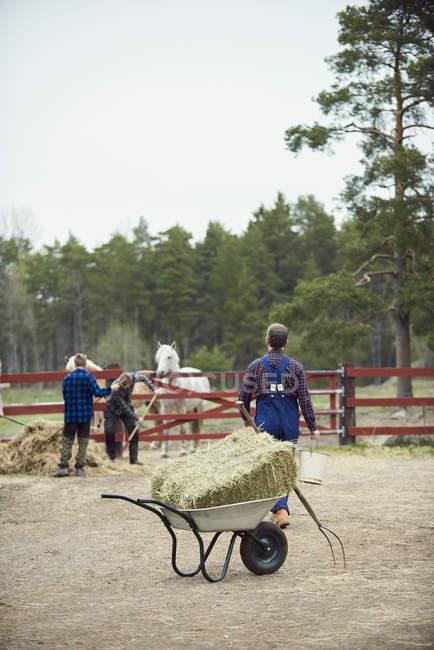 Landwirt geht auf Söhne zu, die an Zaun in Bauernhof arbeiten — Stockfoto