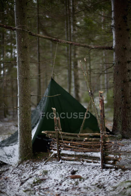 Black tent between tree trunks in woodland at winter time — Stock Photo