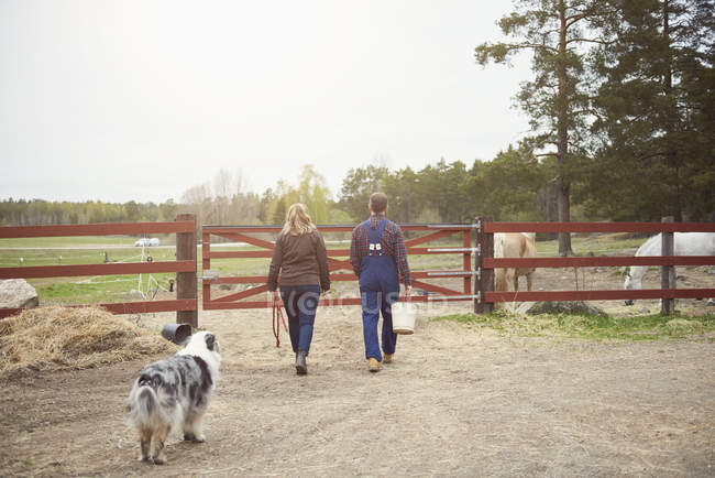 Rear view of mature couple walking towards gate in farm — Stockfoto