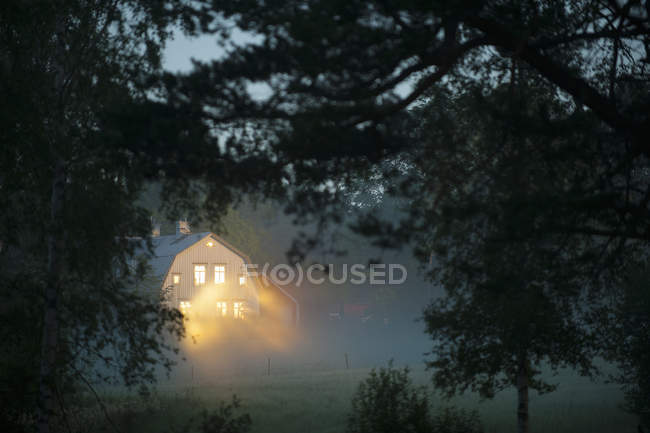 View through branches of Illuminated house in forest at foggy weather — стоковое фото