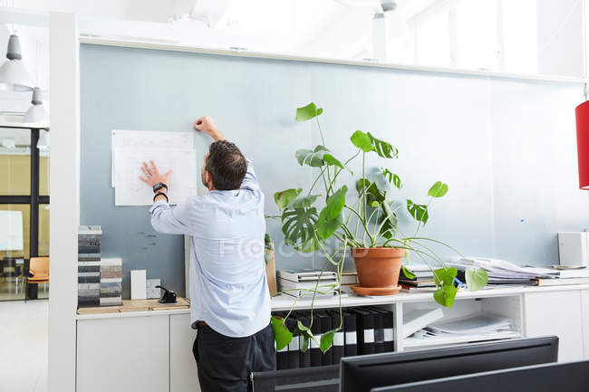 Rear view of male architect working in creative office — Stockfoto