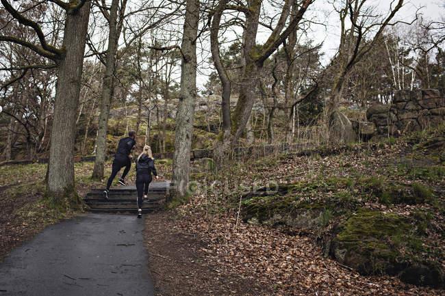 Sportlerinnen und Sportler joggen auf Fußweg zwischen kahlen Bäumen im Wald — Stockfoto