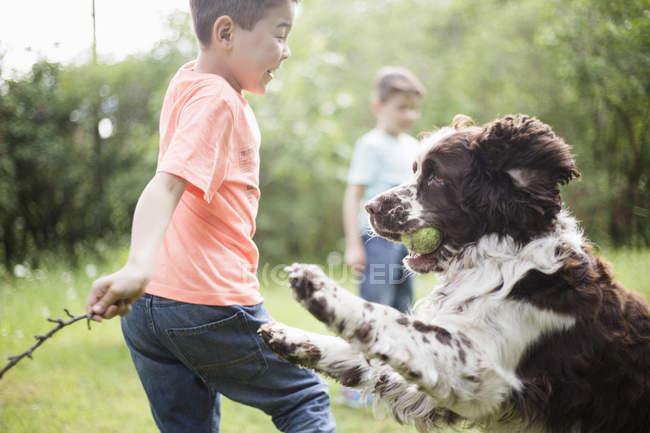 Ragazzo e cane giocare con fratello in piedi nel cortile posteriore — Foto stock