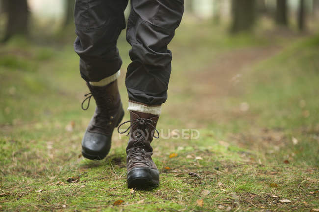 Low section of hiker walking in forest — Stock Photo
