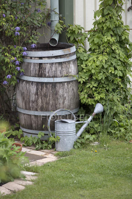 Watering can and wooden barrel near green lawn — Stock Photo