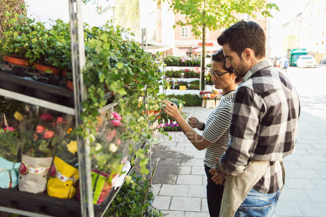 Male owner assisting woman in buying flowers at market on sidewalk — Stock Photo