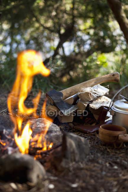 Falò con ax su legna da ardere in campeggio — Foto stock