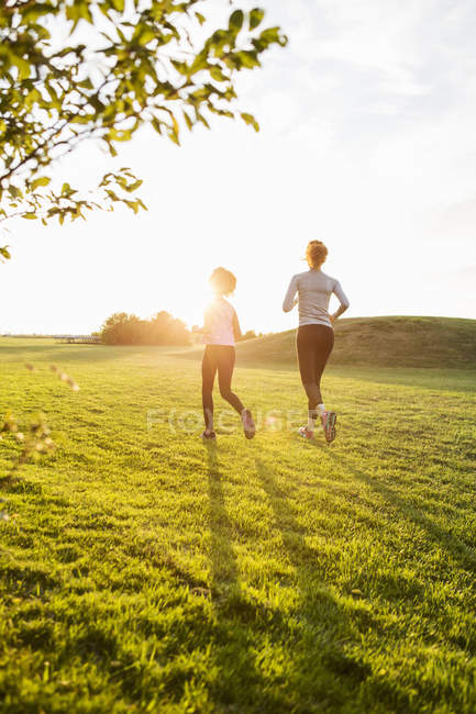 Rear view of mother and daughter running on grass at park against sky during sunset — Stock Photo