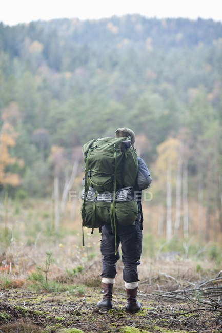 Full length rear view of hiker standing in forest during autumn — Stock Photo