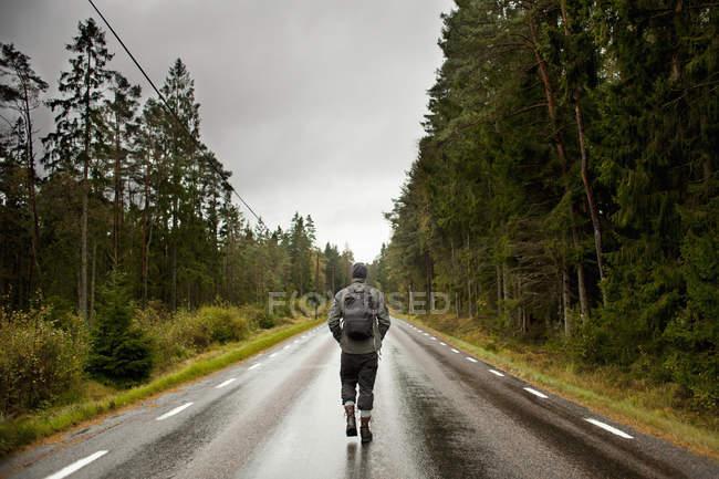 Vista traseira do caminhante caminhando na estrada de terra no meio de árvores contra o céu — Fotografia de Stock
