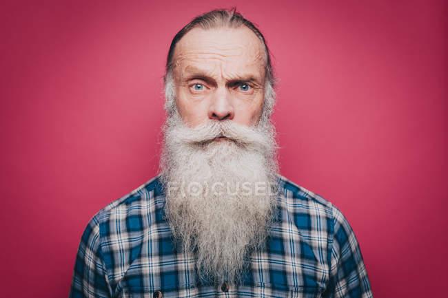 Retrato de hombre confía en senior con larga barba blanca sobre fondo rosa - foto de stock
