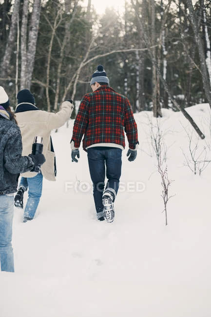 Rear view of friends walking on snow covered field — Stock Photo