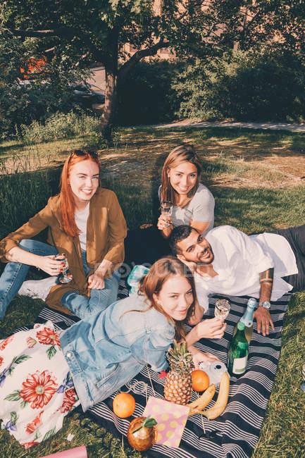 Hochwinkel-Porträt von jungen multiethnischen Freunden genießen Picknick im Sommer im Hinterhof — Stockfoto