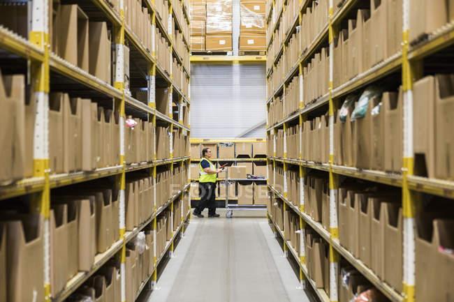 Повна довжина боковий вид зрілої жінки склад працівник натисканням кошик видно через вузький прохід в промисловому будівництві — стокове фото
