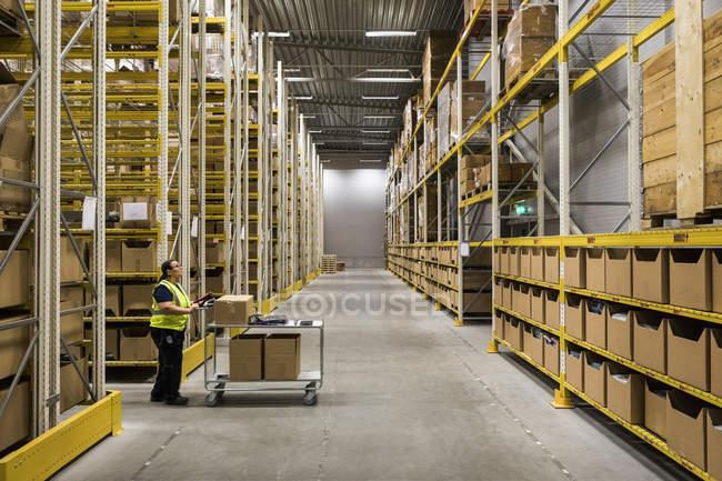 Повна довжина боковий вид зрілої жінки склад працівника натисканням корзини на прохід в промисловому будівництві — стокове фото
