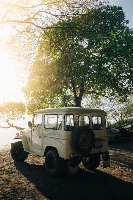 Cross-country vehicle parked by tree at beach on sunny day — Stock Photo