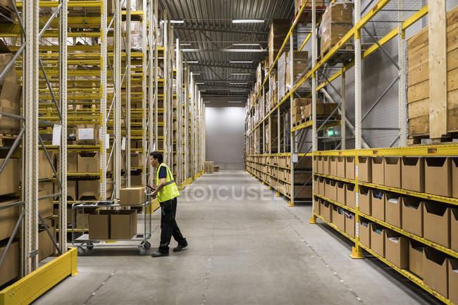 Повна довжина з боковим видом на молоду складський робітник штовхає візок на прохід в промисловий будинок — стокове фото