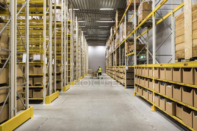 Середні відстані зору старших чоловічого складу працівника натисканням кошик на прохід в промисловому будівництві — стокове фото