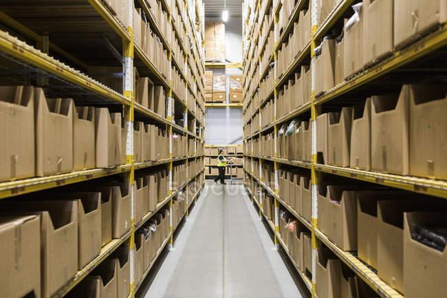 Серединна дистанція зрілої жіночої складської роботи штовхає кошик крізь вузький прохід у промисловому будівництві — стокове фото