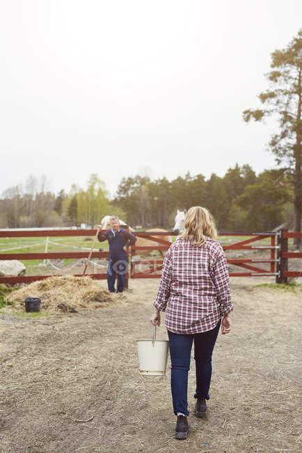 Rear view of female farmer carrying bucket in farm — Stockfoto