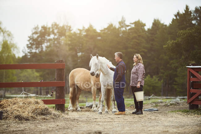 Side view of farmer stroking horse while standing by woman on field — Stockfoto