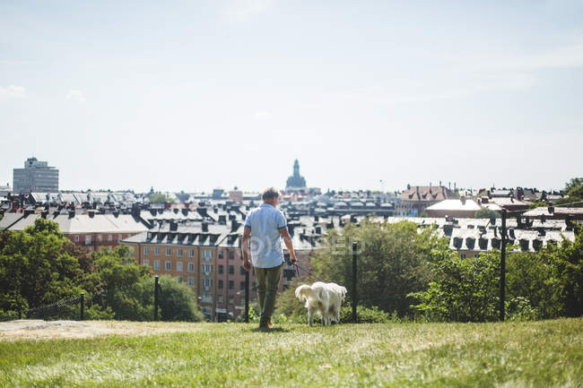 Full length of man walking with dog on field in city against sky — Stock Photo