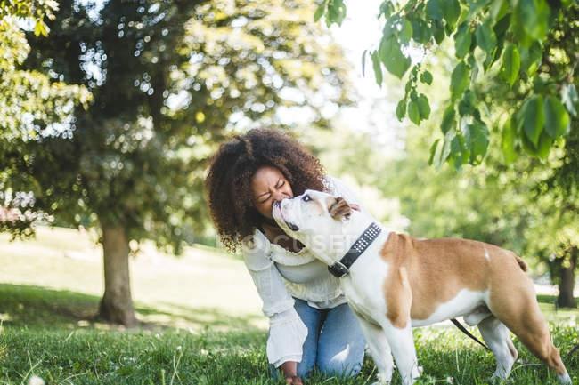 Щасливі середині дорослу жінку з ласкава бульдог в парку — стокове фото