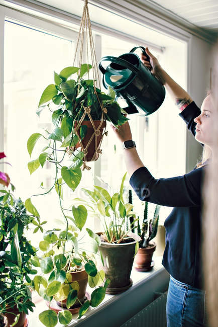 Woman watering plant hanging from window at home — Stock Photo