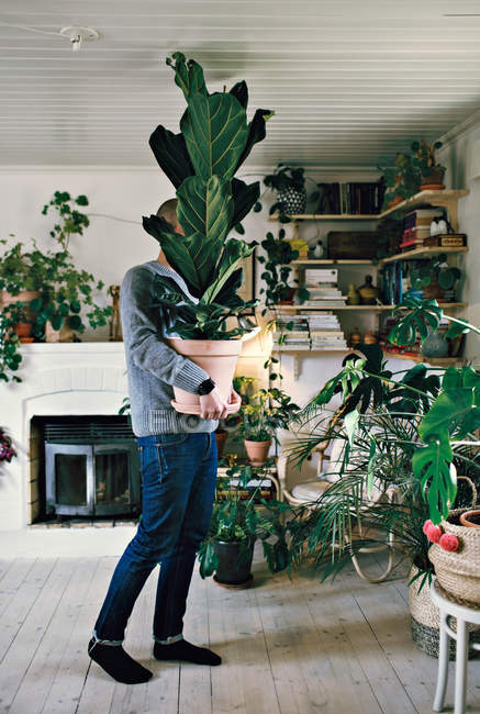 Full length of man carrying potted plant in room at home — Stock Photo