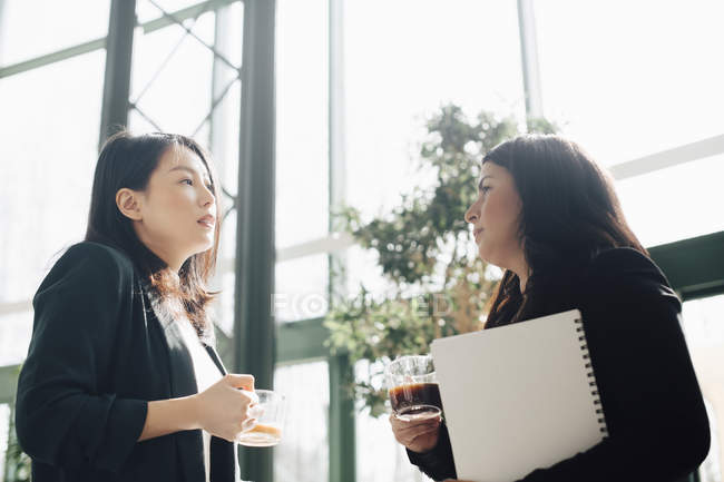 Businesswomen having coffee while discussing in brightly lit office — Stock Photo