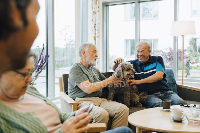 Smiling senior men stroking dog sitting on sofa against window at elderly nursing home — Stock Photo