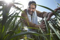 Low angle view of Happy Indian farmer in tall grass against blue sky — Stock Photo