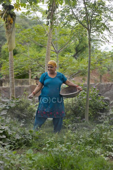 Mujer rociando fertilizante en sus plantas - foto de stock