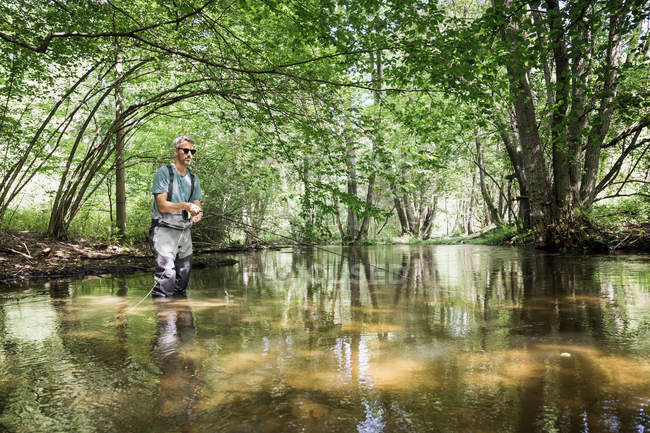 A mature man is fly fishing on river in forest area. — Stock Photo