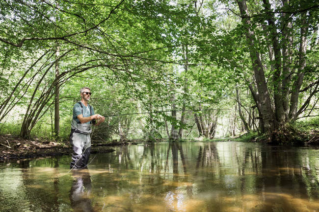 A man is fly fishing on river in forest area. — Stock Photo