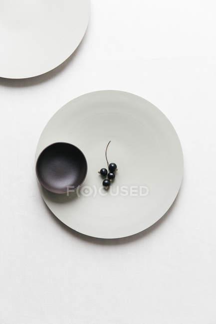 Ribes nero su un piatto su una superficie bianca — Foto stock
